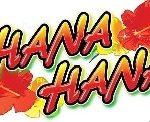 【機種別攻略】ハナハナホウオウ 設定判別必要カウント内容!!ブルーハーツが聴こえる。